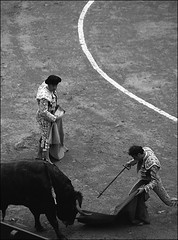 Matador's moment (Stephen Dowling) Tags: blackandwhite bw film valencia monochrome 35mm blackwhite spain 2006 m42 bessaflex bullfight matador
