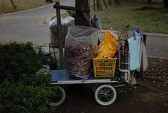 The cart (HAVAHAVA) Tags: autumn fall leave cart