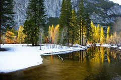 Yosemite in winter.jpg (YOSEMITEDONN) Tags: trees winter snow shots yosemite picturesque outstanding potofgold wonderworld blueribbonwinner outstandingshots worldbest reflectionswinter frhwofavs betterthangood mercedrver coth5