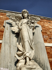 Angel grave42 (Marina García (Mar-Giverny)) Tags: grave decay cementerio esculturas tumbas sculptures tombe cemeterie cemetière graveyerads