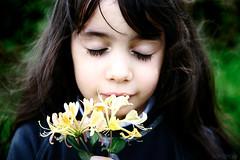 The perfume of honeysuckle (S a v i g n o l e) Tags: portrait flower fleur girl yellow jaune kid perfume odeur smell bouquet honeysuckle concours enfant fille sentir parfum fillette lavieestbelle humer chvrefeuille respirer comptencephoto savignole martineanisaubin