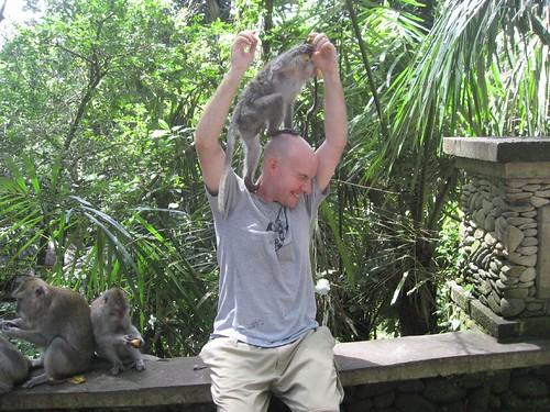 I've got a monkey on my head