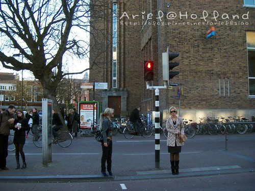 Netherlands - Miffy Traffic light