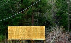 (deweyrob) Tags: trees fishing billboard advertise