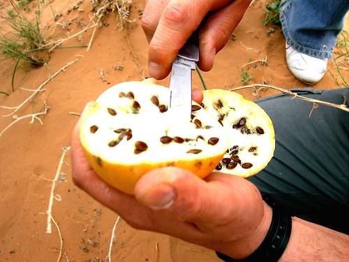MERZOUGA-SAHARA-2008-8MP 040