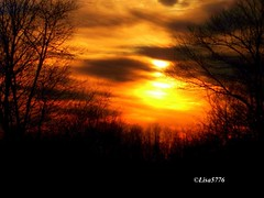 Firery-Glowing-sky!! (Lisa Ann Photography) Tags: trees sunset fab farm glowing skyshot firery lisa5776 life~asiseeit