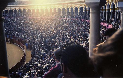 bullfight.Seville