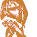 bruce icon orange