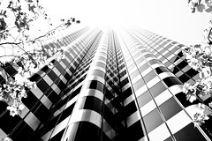 You want everything (henrikj) Tags: sanfrancisco california street trees bw usa architecture skyscraper buildings market 04 location highrise fv10 2008 biology fav10 444marketstreet fav25 444market