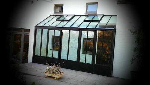 Anlehngewächshaus Pultdach Palmen GmbH (284)