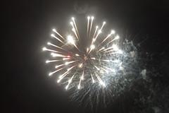Redhill Bonfire #27