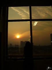 ver o sol se pr quadrado... (alineioavasso) Tags: sunset people sun sol window contraluz pessoa sopaulo prdosol janela reflexo faculdade challengeyouwinner duetos