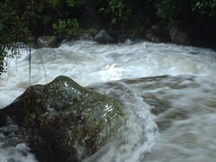 Río en Mérida, River in Mérida
