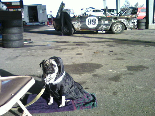 At Thunderhill