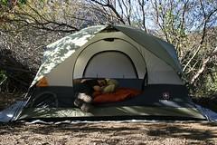 Pimp Tent