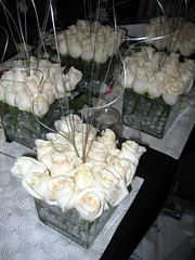 IMG_0015 (kristenhenschen) Tags: flowers winter wedding decorations roses white floral bar petals orchids january megan reception callas hydrangea centerpiece submerged decor accents peonies weddingflowers weddingreception winterwonderland centerpieces winterwedding weddingcenterpiece