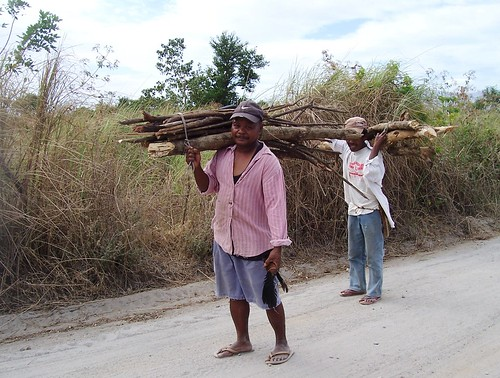 image of firewood gatherers on the way home