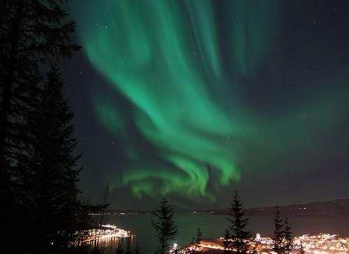 Narvik Aurora Boreale
