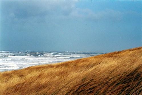 Weekendje Egmond aan Zee