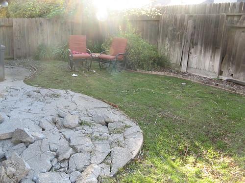 backyard 011