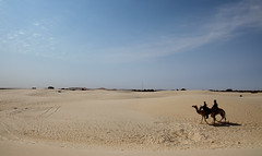 Tuareg (Essakane, Mali) (david ross smith) Tags: africa sky sahara sand desert african bigsky mali camels tuareg africans thirdworld essakane festivalaudesert tracksinthesand ridingcamels sandandsky ridingcamel desertandsky crossingthedesert culturesofresistance davidrosssmith