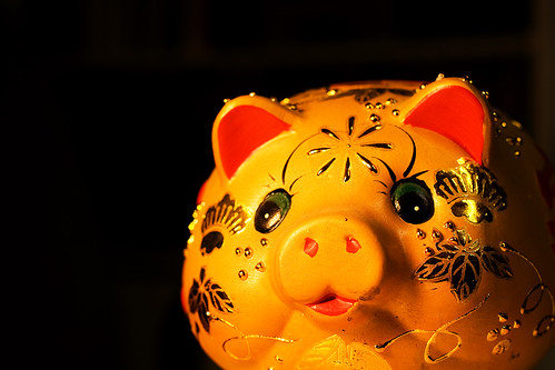 Spider pig (made in china)
