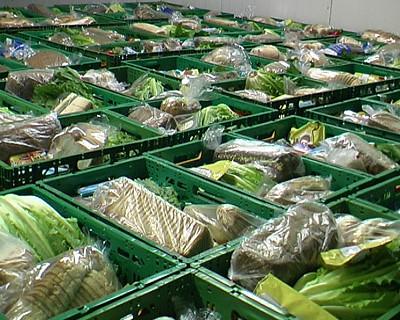 Voedselpakketten in Rotterdam