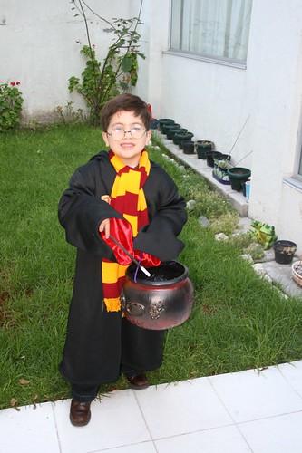 Tayo Potter