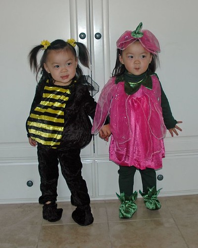 ReeRee the bumblebee and Rosie the pretty pink posy