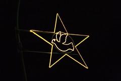 everyone wishing for peace? (joaobambu) Tags: berlin deutschland star peace dove stern karlmarxstrasse