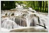 0008 (andre.clavel) Tags: france rivière cascade franchecomté ledard beaumeslesmessieurs