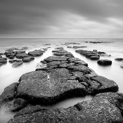Maer Rocks (Adam Clutterbuck) Tags: ocean uk greatbritain sea england blackandwhite bw seascape seaweed texture beach monochrome square landscape mono coast blackwhite rocks unitedkingdom britain squares pavement tide bn coastal devon shore elements gb bandw sq limitededition exmouth 500x500 greengage maer accepted1of100bw adamclutterbuck sqbw bwsq showinrecentset shortedition southdevoncoast maerrocks le50 winner500 limitededition50