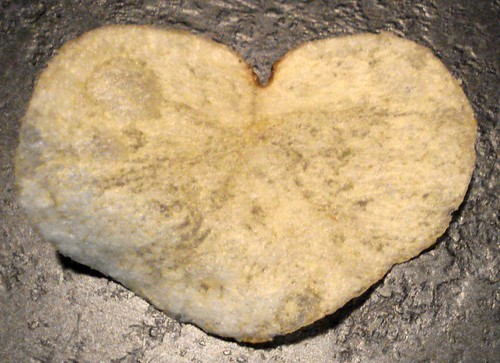heart shape The Science of Single