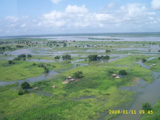 zambezi 11