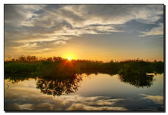 Sunrise in the Everglades (Fraggle Red) Tags: trees sun reflection clouds sunrise florida evergladesnationalpark jpeg hdr royalpalm naturesfinest blueribbonwinner supershot enp canonefs1785mmf456isusm anhingatrail 3exp mywinners anawesomeshot betterthangood dphdr goldstaraward worldwidelandscapes