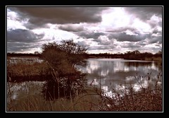 Storm Clouds (BramstonePhotography) Tags: sky storm water clouds naturereserve golddragon proudshopper goldstaraward