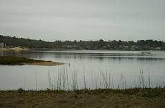IMG_0191 copy (ryanrichardson) Tags: scenic rop wareham tidalflat