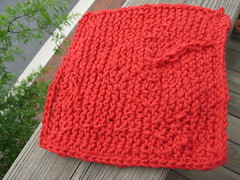 dishcloth back