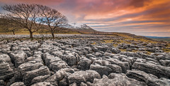 The Limestone Pavement (Lee~Harris) Tags: stone limestone rugged landscape landscapes landscapephotography tree trees sky hill snow winter sunset nikon nikond300 serene scenery uk yorkshire southerscales clouds beauty love light outdoors outdoor walking photography