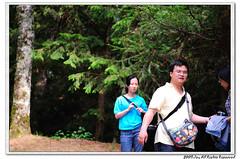 nEO_IMG_DSC_4702 (tzungyilin) Tags:  d90 nikon2470 nikonsb900