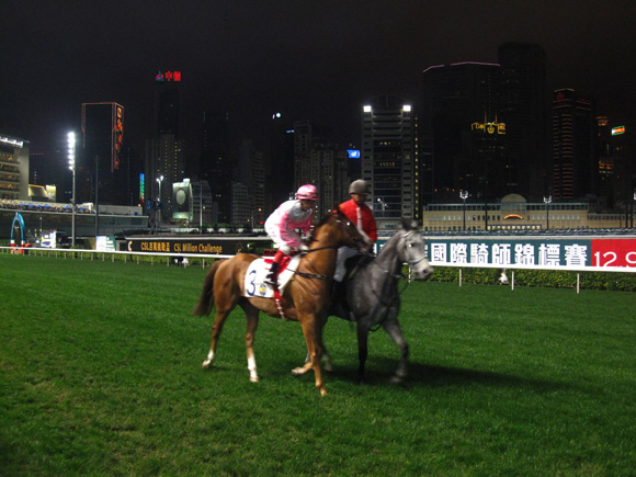Horse Race in Hong Kong
