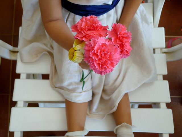 a daisy and 3 carnations