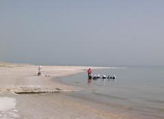 dead sea, arabian women (Todesfee) Tags: israel desert middleeast hijab resort spa deadsea eingedi arabianwomen
