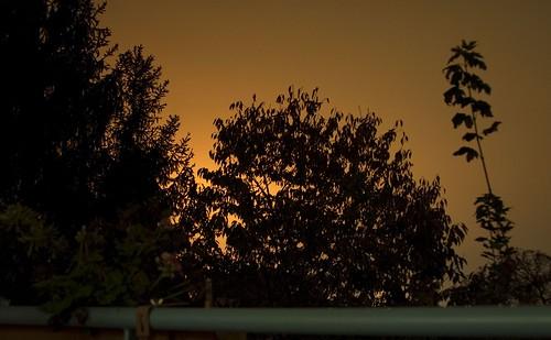 Abendhimmel Sürth