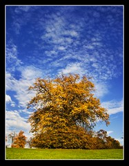 Natures Beauty (adrians_art) Tags: blue autumn trees red sky orange white green yellow clouds geotagged landscapes seasons parks foliage geotags