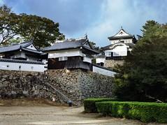 Bitchu Matsuyama castle  (TeraMeguri) Tags: geotagged 28 6x45 75mm nikkorp zenzabronicas2 geo:lat=348088 geo:lon=133622675