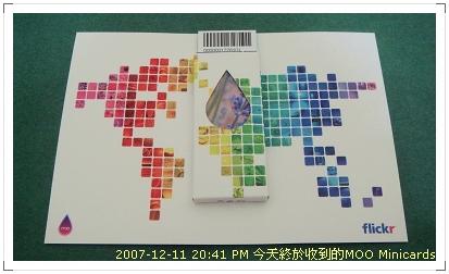 Moo Minicards004