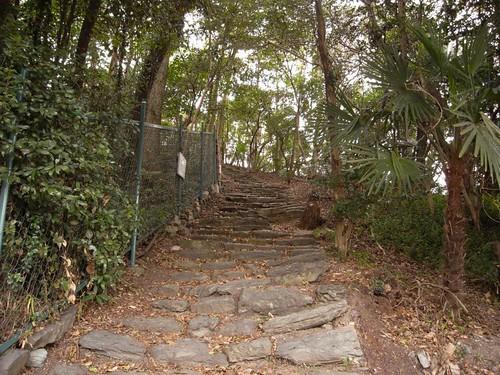 玉津島神社-08