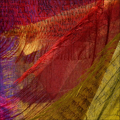 blowing in the wind (barbera*) Tags: red toronto yellow purple text tibet fabric colourful prayerflags soe prayers freetibet 500x500 artisticexpression blowinginthewind goldenphotographer tibetancanadianculturalcentre