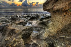 Coral Cove 1 (MDSimages.com) Tags: ocean sun beach jupiter palmbeach michaelsteighner mdsimages